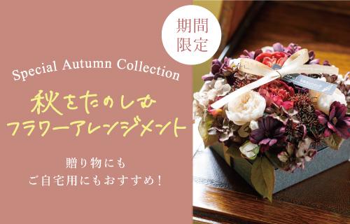 /aminggift/top/autumnflower_slidebnr.jpg