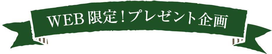 WEB限定!プレゼント企画
